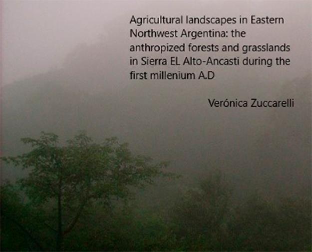 Agricultural Landscapes in Eastern Northwest Argentina